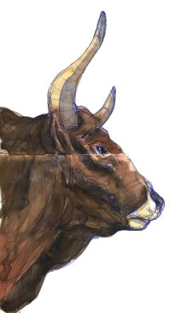 aurochs-wb